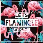 Maxxim Berlin Lets Flamingle