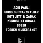 Ritter Butzke Berlin Das Haett es Frueher Nicht Gegeben with Acid Pauli, Chris Schwarzwälder, Kuriose Naturale a.o