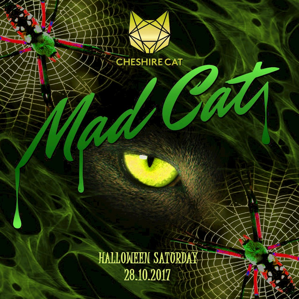 """Cheshire Cat Berlin """"The Mad Cat"""" Halloween Party"""