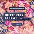 Avenue Berlin Avenue Moments x Butterfly Effect Frühlingserwachen