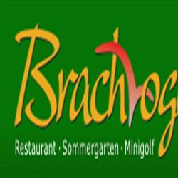 Brachvogel Biergarten