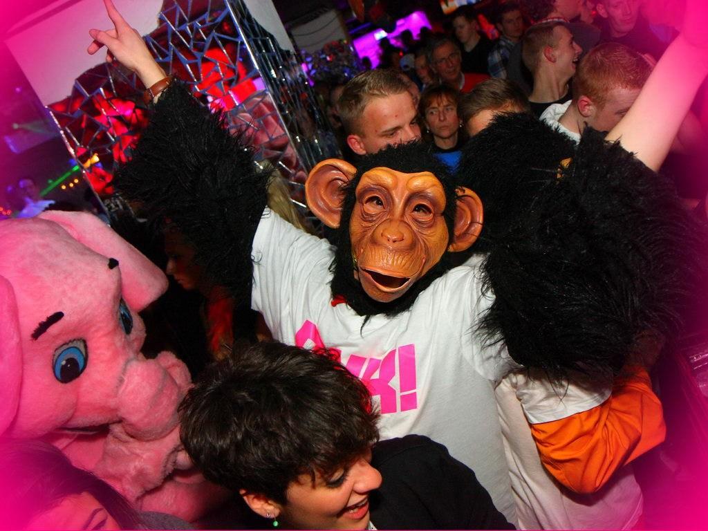 Partyfoto #50 Q-Dorf 24.02.2012 Pink! - Part 1